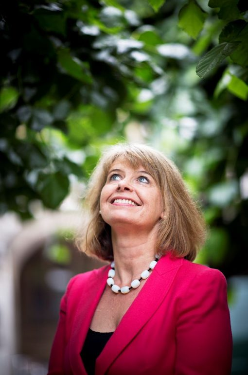 Harriett Baldwin Appointed Defence Minister In Government